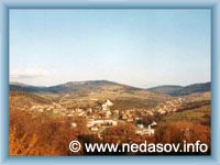 Nedašov - Pohled na obec