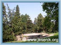 Jeseník - Lesní divadlo