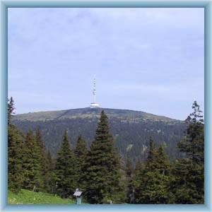 Jeseníky, Rychlebské hory, Kralický Sněžník
