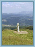 Socha slůněte pod vrcholem Králického Sněžníku