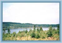 Bedřichovská přehreda