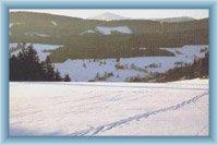 Sněžka od Dolních Albeřic