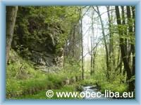 Libský potok