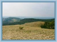 Přírodní rezervace Děvín