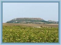 Přírodní rezervace Tabulová