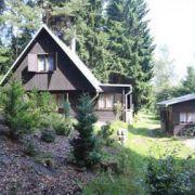 Chaty u lesa - Lipno