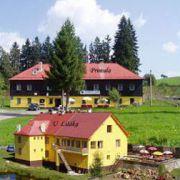 Hotel/penzion - Petrklíč - U Lišáka restaurace