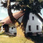 Šumavská chalupa