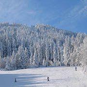 Ski Hohenbogen