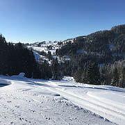 Skiareál Janova Hora