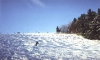 Ski are�l Dale��n