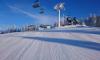 Ski are�l Ple�ivec