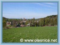 Olešnice v Orlických horách - Pohled na obec