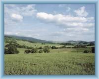 Krajina u Sedloňova