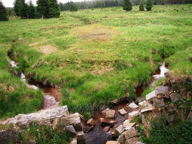 rybník Samotář u Reizenhainu