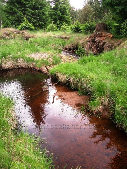 Pohraniční potok u Reinzenhainu