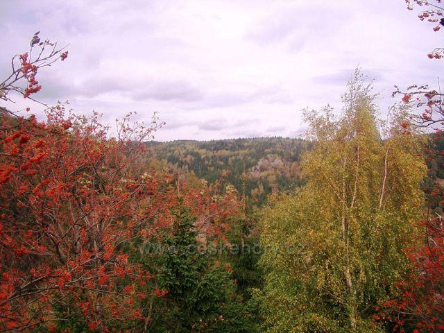 Pohled z Medvědí skály do zářezu Bezručova údolí
