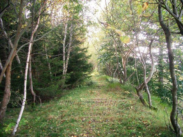 zaniklá Křímovská trať na vrcholu kopce
