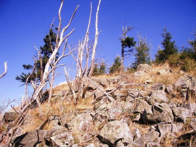 Jelení hora vrchol - kamenítý svah -poblíž keška