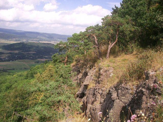 Rašovické skály - příkré stěny plné chráněných rostlin