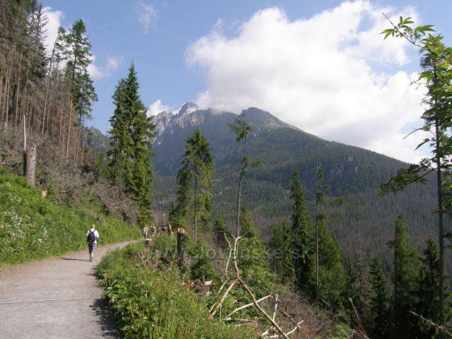 nad Bilíkovou chatou-Vysoké Tatry
