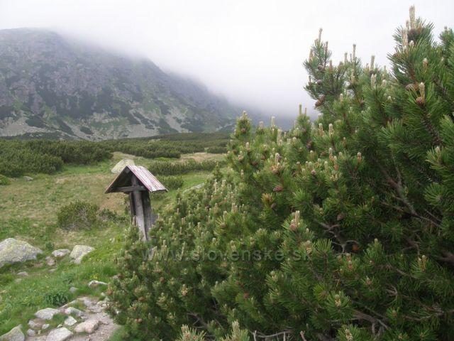 Furkotská dolina-Vysoké Tatry