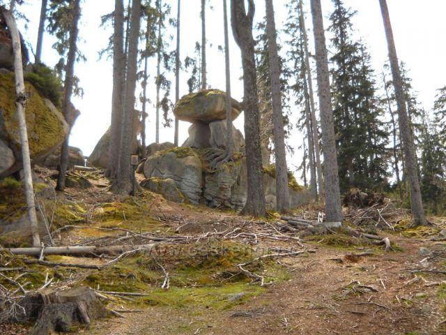 Medvědí stezka - Jelení vrchy