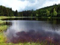 Šumava - Žďárecké jezírko