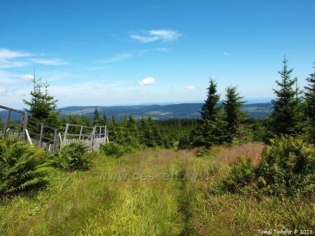 Šumava - vrchol Ždánidla - pohled do Čech
