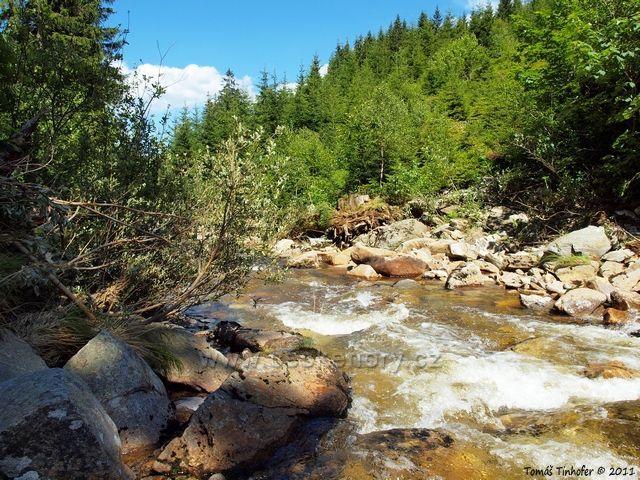 Šumava - Prášilský potok
