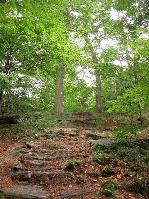 vyhlídka Vysoký kámen  u Horních Hoštic - výstupní schodiště
