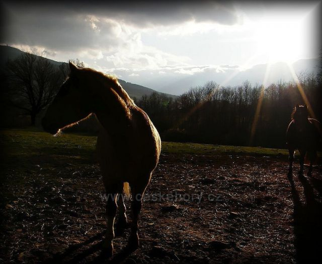 ranč Orel-Česká Ves