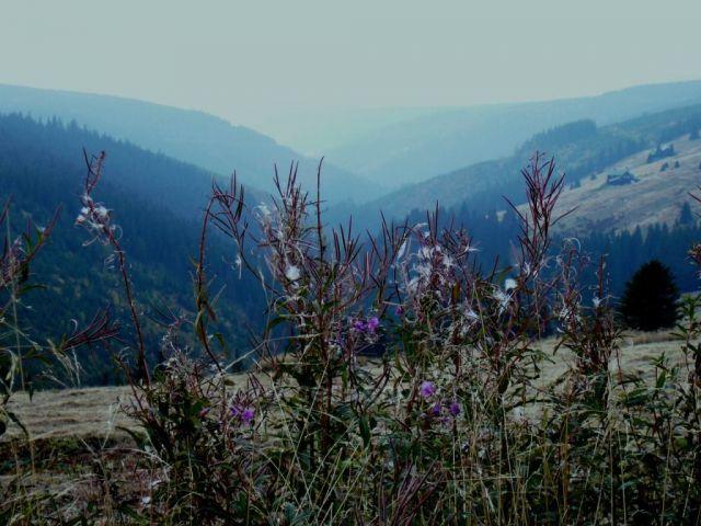 Krakonošovo údolí