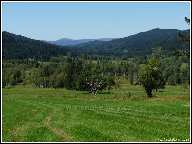 Šumava - okolí Krásné Hory, pohled na vrchol Luzný
