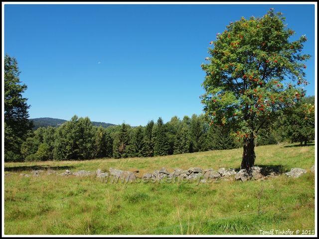 Šumava - Okolí Krásné Hory