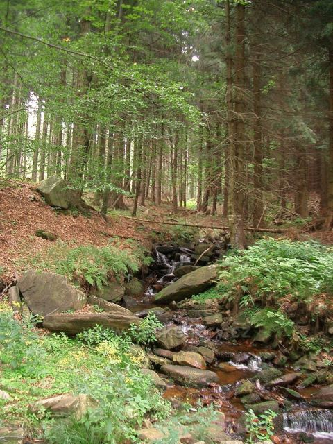 Hraniční potok , Kryštofovy Hamry