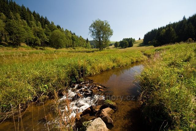 Moldavský potok na hranici