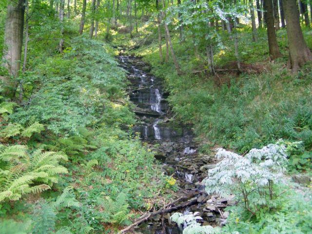 Potok Bystrý-Beskydy