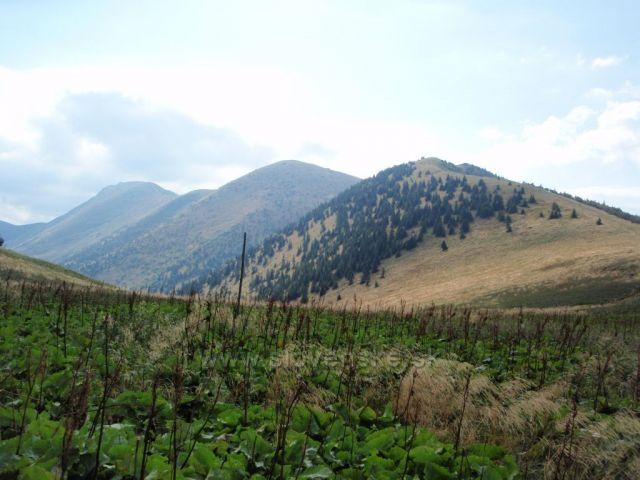 Pohled z úpatí Stohu na Poĺudňový grúň, Hromové a Chleb