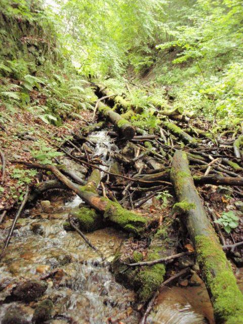 Pod Šútovským vodopádem