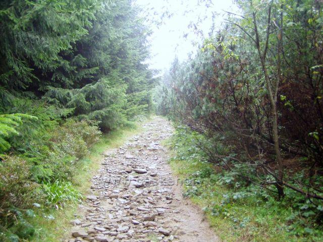 Turist.cesta na Tanečnici-1084m