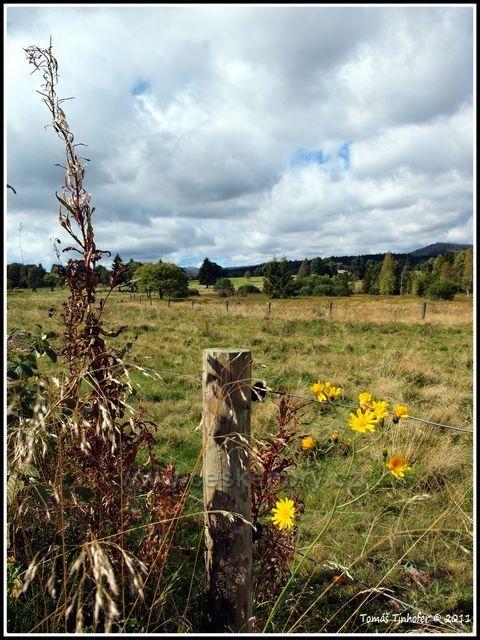 Šumava - Knížecí Pláně, pohled na Luzný