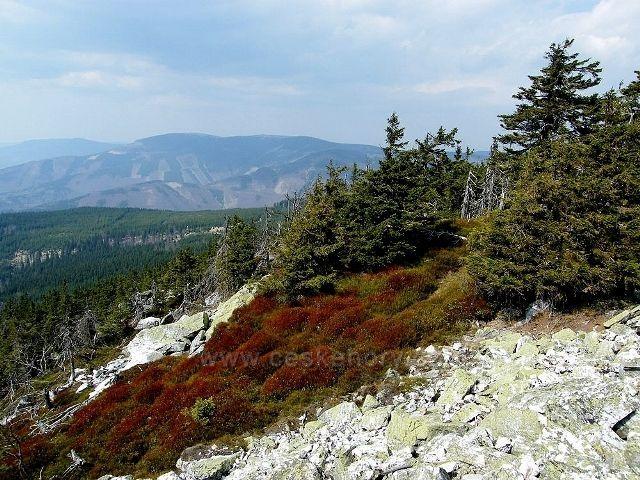 Pohled na severní hřeben Hrubého Jeseníku