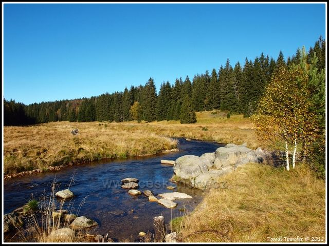 Šumava - Roklanský potok na podzim