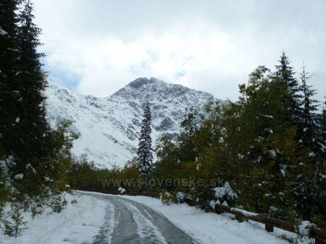 cesta na Volovec