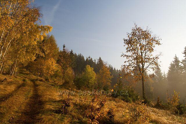 Podzim u Petler