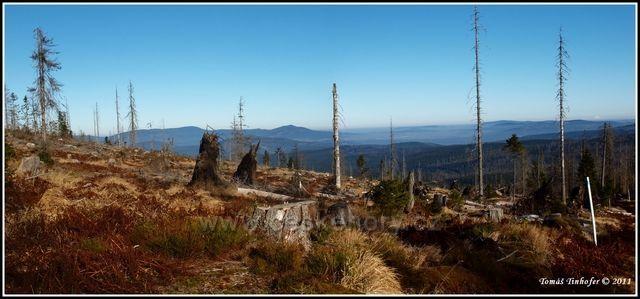 Šumava - vrchol Třístoličník - pohled na Boubín
