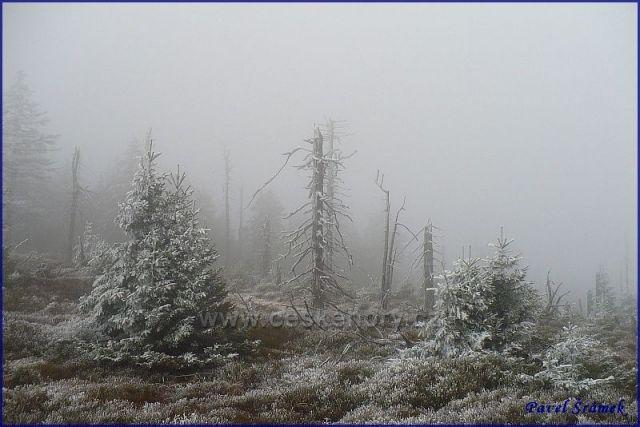 Na Malém Sněžníku