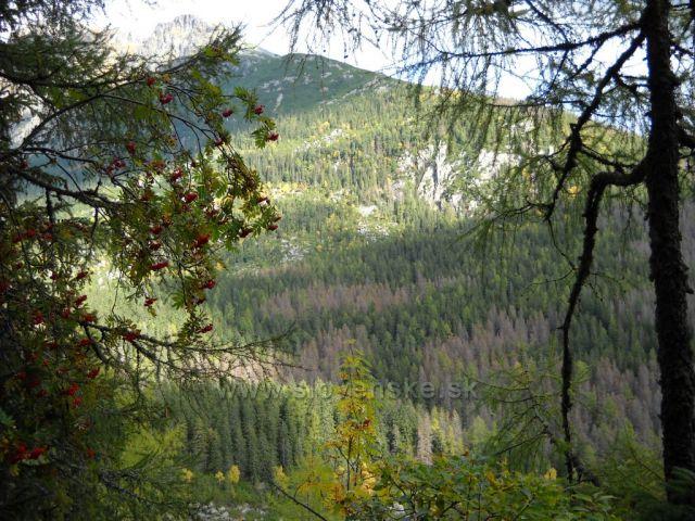 Vysoké Tatry, Malá Studená dolina, po červené značce tatranské magistrály z Hrebienka