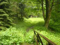 okolí Zelené Lhoty